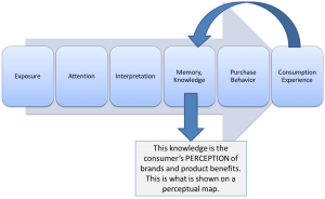 Model of the Perceptual Process
